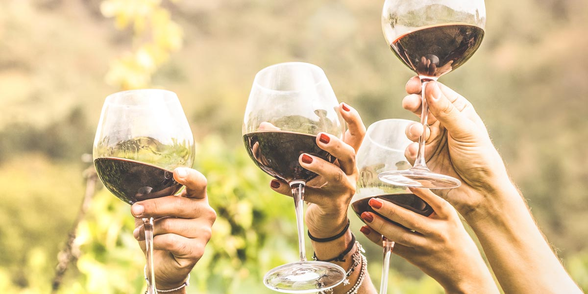Friends toasting one another on wine tour