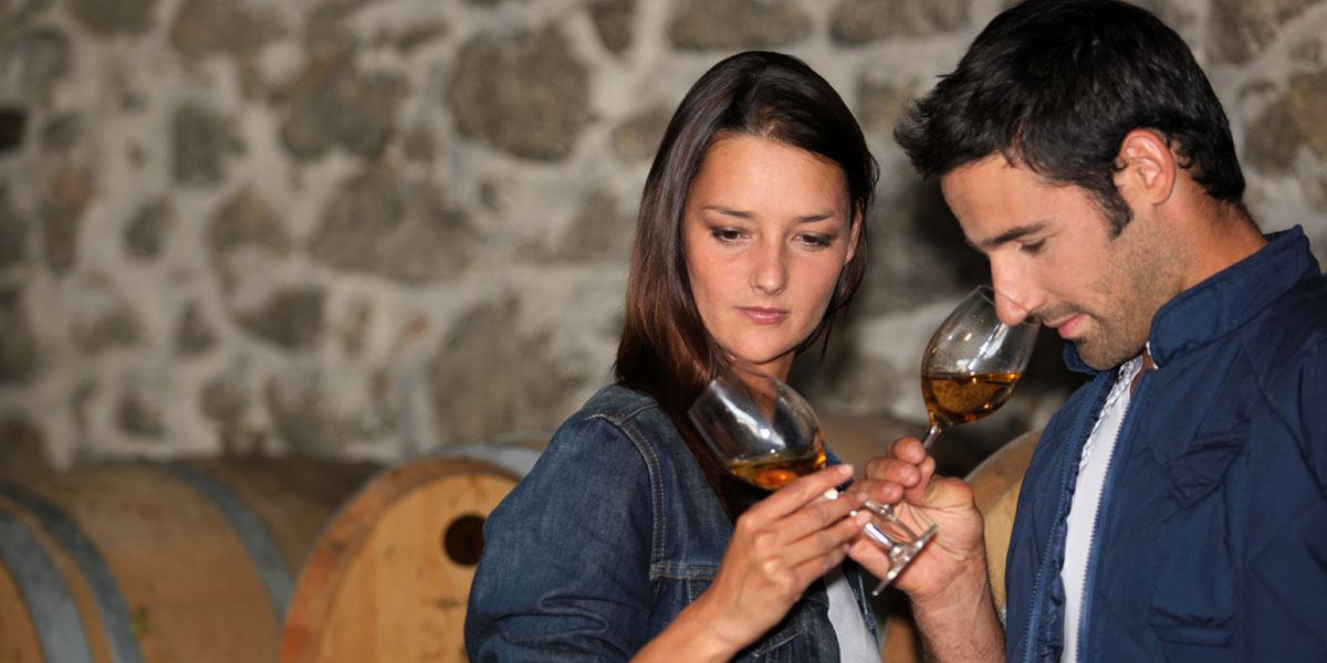 Couple smelling wine in wine cellar