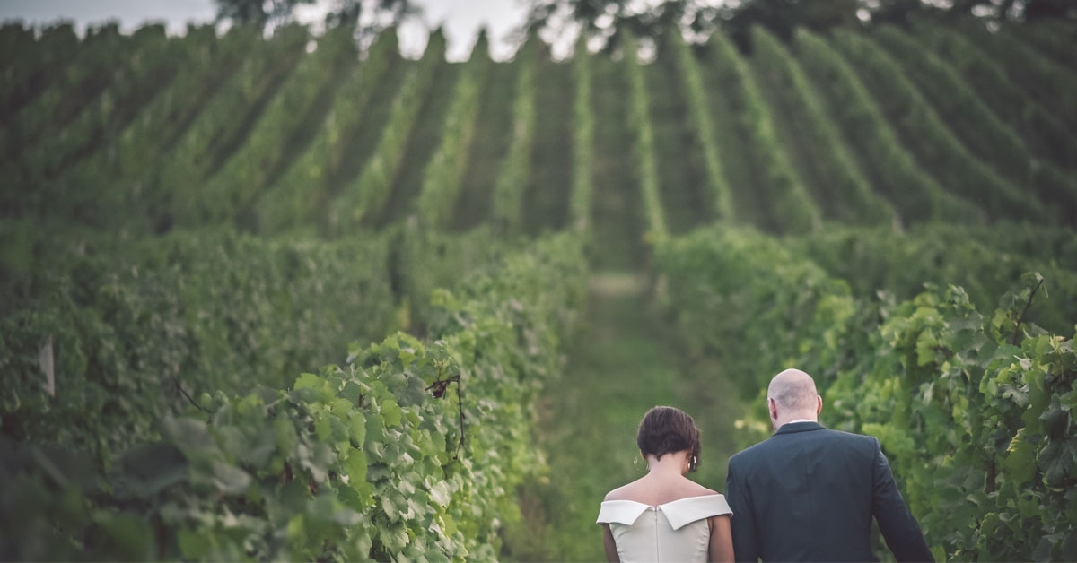 Couple walking through vineyard on their wedding day